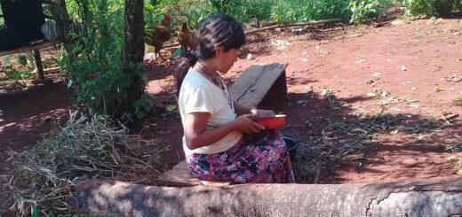 La visión de dos líderes Mbya Guaraní sobre la pandemia, sus temores y sus creencias para el futuro