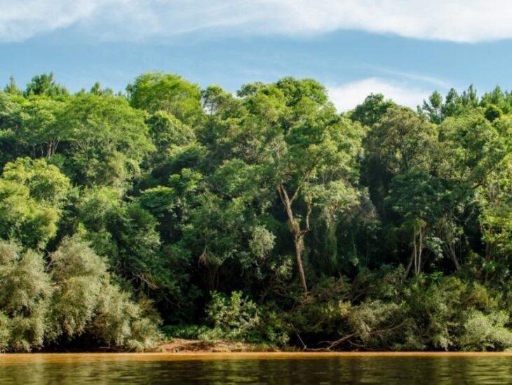 Los desafíos que dejó la Cumbre de Adaptación Climática