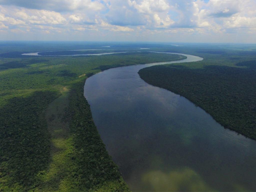 Cambio Climático: Andresito avanza en un Programa Municipal de REDD+ de manejo de bosques protectores de arroyos y restauración de cuencas hídricas