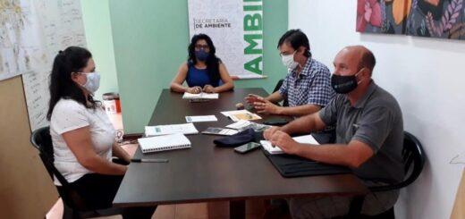 Eldorado: la Secretaría de Ambiente trabajará en conjunto con el SENASA para controlar al caracol gigante africano