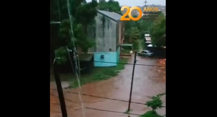 Temporal en Posadas: vecinos de la Chacra 122 fueronafectados por las lluvias y el desborde del arroyo La Antonica
