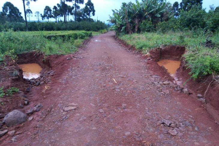 Con trabajos del INYM, el agua de la lluvia queda en las chacras