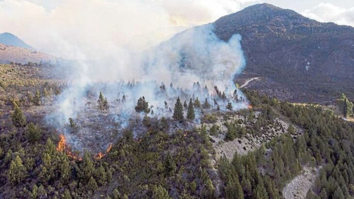 Incendios forestales en Río Negro: el daño ambiental ya es el más grande de la historia de El Bolsón