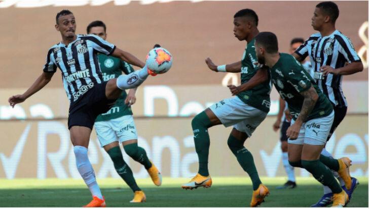 Palmeiras derrotó al Santos y es el nuevo campeón de la Copa Libertadores