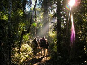 Semana Santa en Misiones: conocé los mejores lodges de selva sobre el río Iguazú y en Salto Encantado