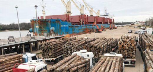 PyMEs madereras pedirán a la Nación medidas para restringir la exportación de rollos sin procesamiento