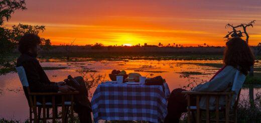 Esteros del Iberá 2021: Rincón del Socorro, un paraíso natural único en el mundo