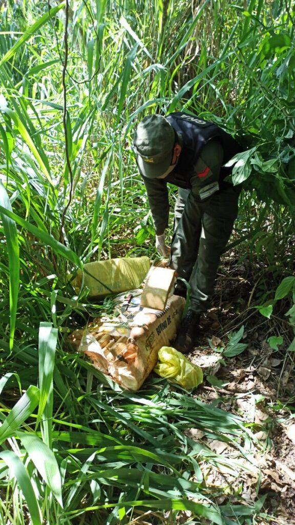 Gendarmes hallan 76 kilos de marihuana ocultos entre la vegetación en Eldorado