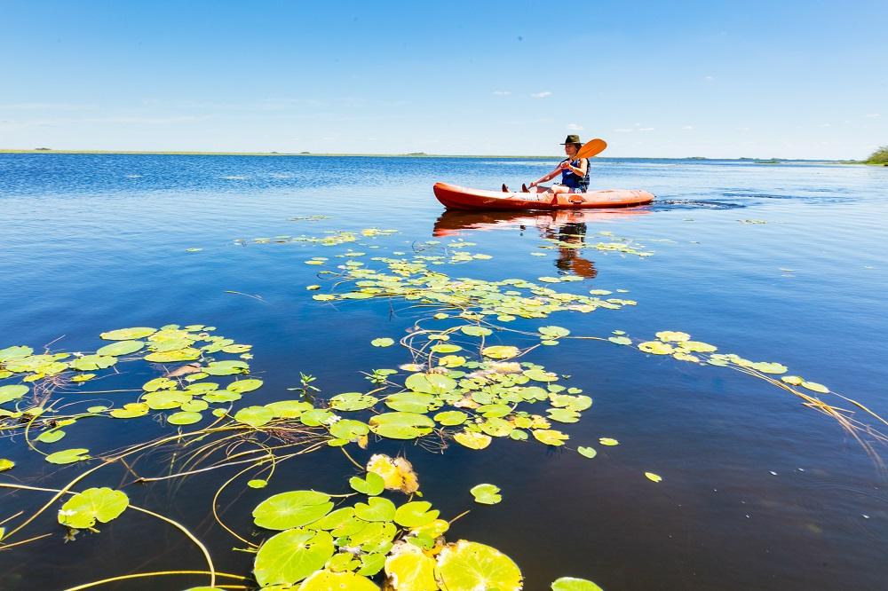Rewilding Experience: ecoturismo sin precedentes en los Esteros del Iberá