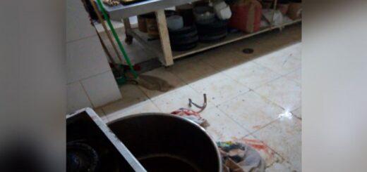 Bahía Blanca: un nene de 4 años resultó herido en sus piernas al quedar atrapado en amasadora de pan