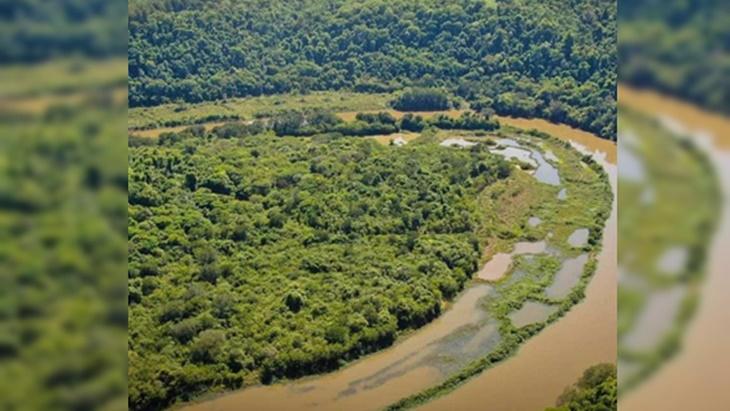 """Mario Vialey, ministro de Ecología: """"El término de ecocidio no es acorde al efecto que hay en el arroyo Garuhapé"""""""
