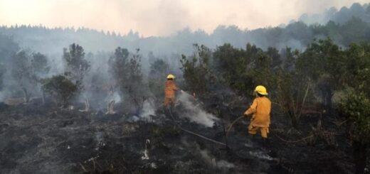 La Federación de Bomberos Voluntarios valoró la creación de una brigada especial para combatir incendios forestales