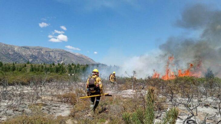 La Pampa, Neuquén y Chubut mantienen focos de incendios activos