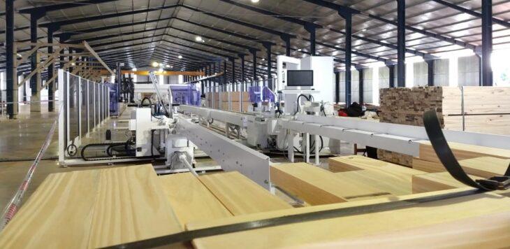 Foresto industria: tres empresas de Misiones están en condiciones de certificar sus productos para exportar