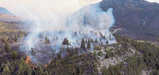 Incendio forestal en El Bolsón: la Justicia imputó a seis turistas por originar el fuego