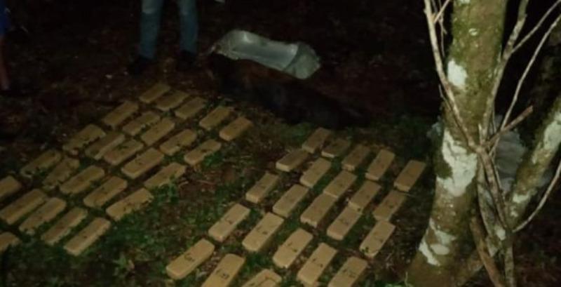 Hallaron más de 50 panes de marihuana en una chacra de la Colonia El Bolsón en Garuhapé