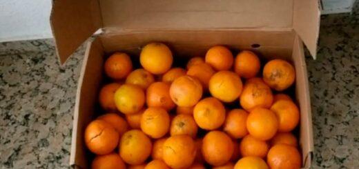 Para no pagar multa por exceso de equipaje se comieron 30 kilos de naranjas en el aeropuerto