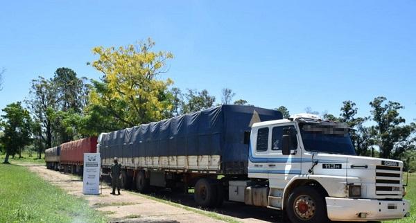 Contrabando: detienen en Gobernador Virasoro, tres camiones cargados de soja que tenían como destino la provincia de Misiones