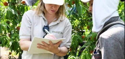 RENATRE continúa con su labor junto a los trabajadores rurales en Misiones