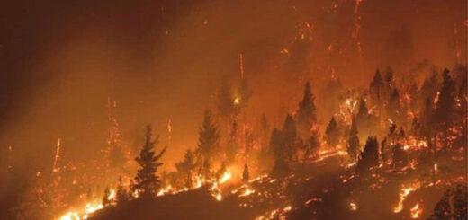 Un video muestra el impactante avance del fuego que arrasa con todo en la Patagonia