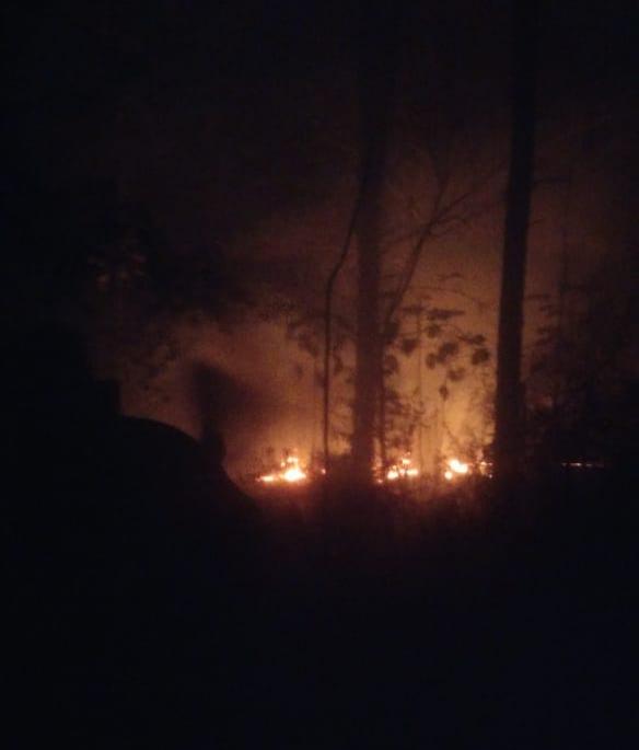 Colonia Aurora, Puerto Esperanza y Posadas las localidades afectadas por los incendios