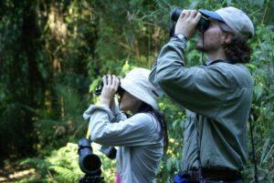 Otoño en Misiones: la Ruta de los 5 Lodges para unir Cataratas, Salto Encantado, Moconá, Andresito y Eldorado