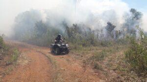 Sofocaron incendios de malezas y pinares en Misiones