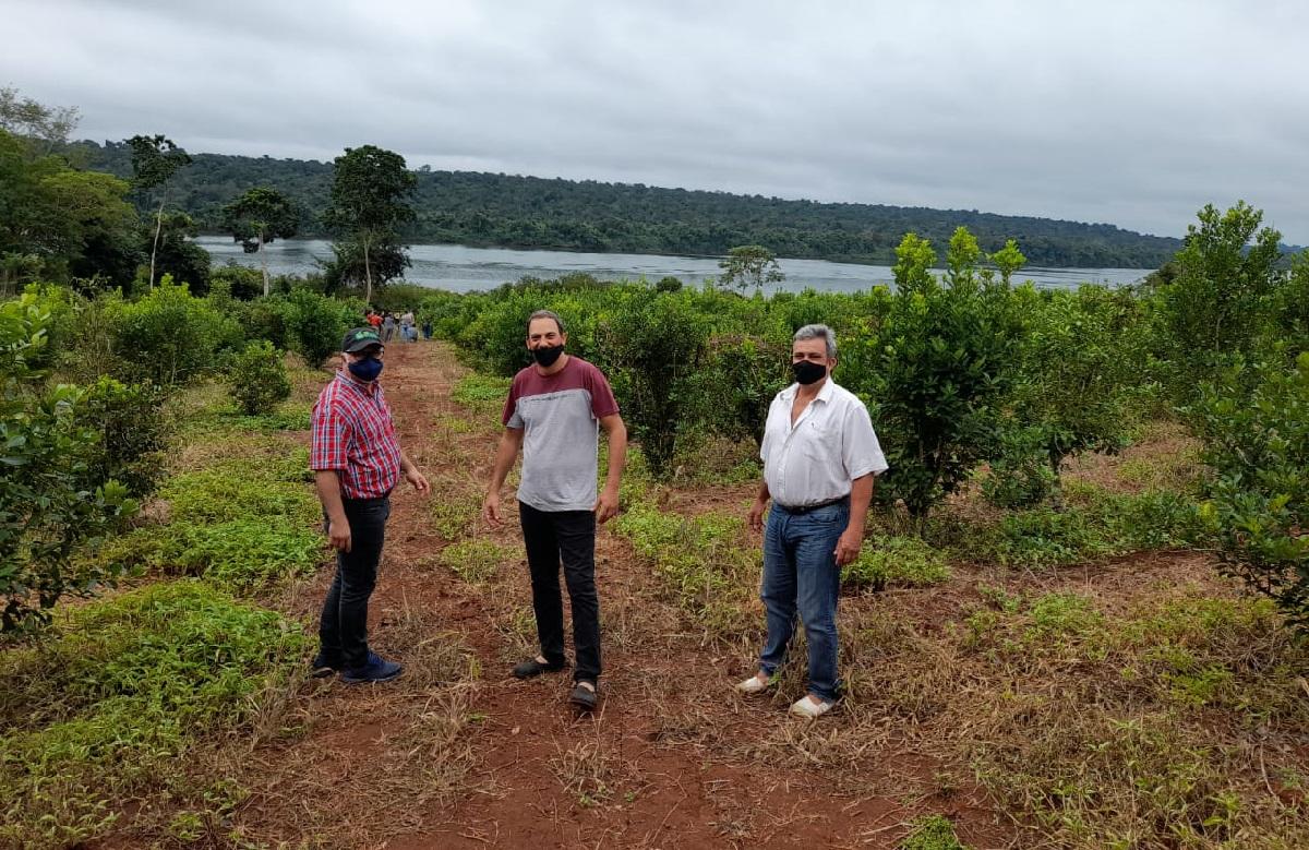 """Jonás Petterson: """"La técnica de poda de rama madura que promueve el INYM permite aumentar año a año los rendimientos de cosecha"""""""