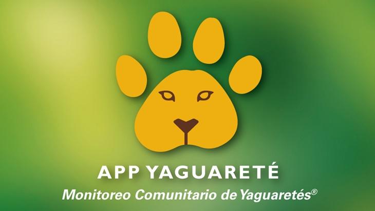 yaguaretes