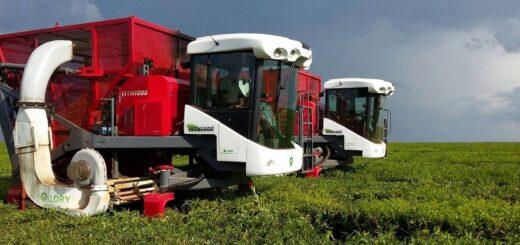 Empresa metalúrgica de Oberá desarrolló una máquina para la cosecha de tabaco y ya realizaron las primeras pruebas