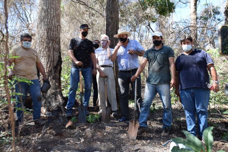 Inició en Misiones la restauración del bosque nativo afectado por incendios