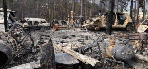 Incendios en la Patagonia: salvó su vida gracias a una pileta de lona