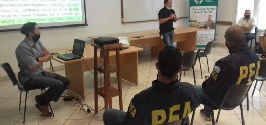 El INYM continúa el trabajo conjunto para prevenir el robo de yerba mate