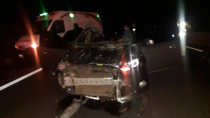 Santa Ana: un automóvil chocó con dos animales y los ocupantes resultaron heridos
