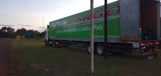 camión de Vía Cargo con cubiertas Chinas