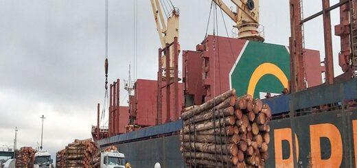 Desde FAIMA advirtieron a Matías Kulfas que la exportación de madera sin industrializar compromete miles de fuentes de trabajo en Misiones