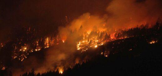 Incendios forestales en Chubut: hay doce personas desaparecidas