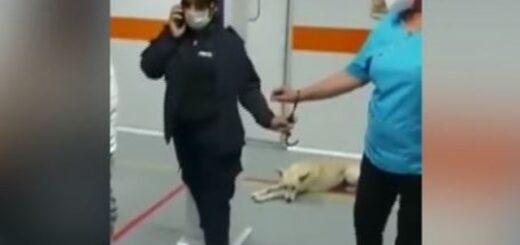 una policía esposó a una enfermera