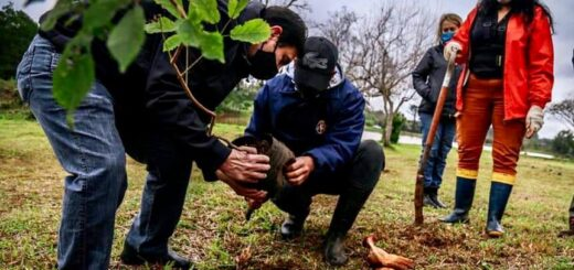 Eldorado: el Intendente ratificó el compromiso ambiental al unirse al Pacto global de alcaldes por el clima