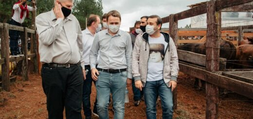 el gobernador oscar herrera ahuad acompañó a productores