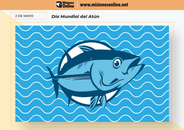 Hoy es el Día Mundial del Atún: una de las especies más consumidas en el mundo por su alto valor nutricional