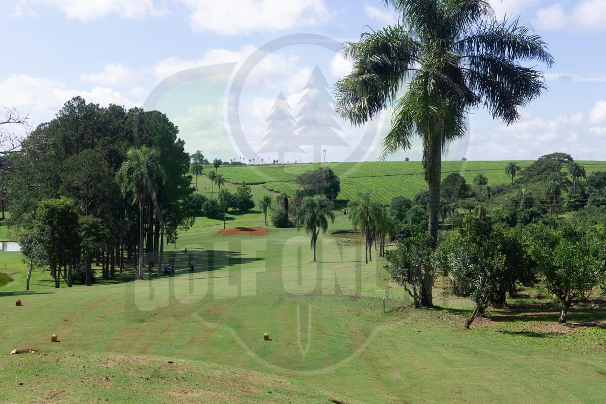 Golf: Juan Viana y MartaHuxley, los grandes ganadores de la segunda fecha del Camellias Tour