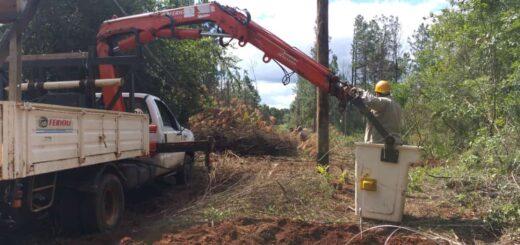 Plan Acceder: Energía de Misiones llevó a cabo acciones en Loreto y Jardín América