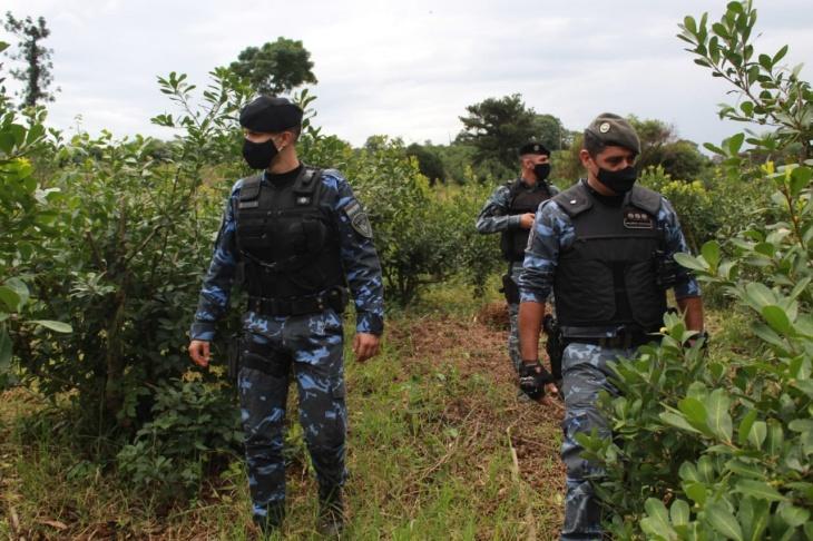 Los operativos rurales de la Policía de Misiones dejaron 50 detenidos, 90 actas labradas y 50 vehículos secuestrados