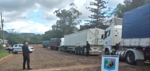Interceptan en Misiones más de 115 toneladas de soja ilegal
