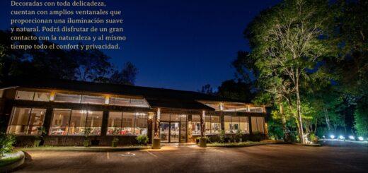 Viajá a Cataratas y descubrí Yvy Hotel de Selva: el destino que ofrece paisajes impresionantes y una exuberante vegetación