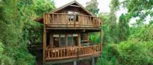 Otoño en Misiones: descubrí la Selva misionera en Tacuapí Lodge, con 25% de descuento