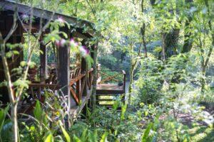 Fin de semana largo en Don Enrique Eco Lodge: el All Inclusive por excelencia de los Saltos del Moconá
