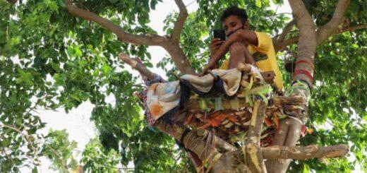 Un joven vivió durante 11 días en un árbol para no contagiar a su familia de coronavirus