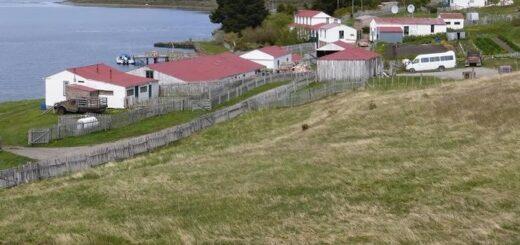 Presentan las becas Thomas Bridges para estudiantes de las Islas Malvinas
